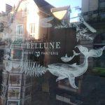 Librairie Libellune