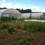 Jardin potager de la Ruée